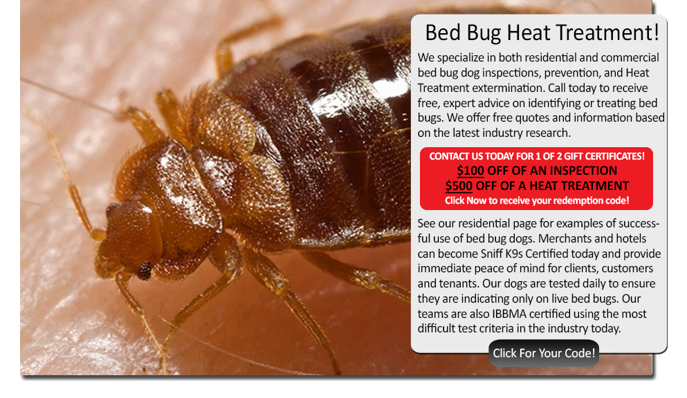 Bed Bug Heat Treatment Connecticut Sniffk9s Bed Bug Dogs And One